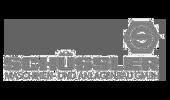 Schüssler Logo